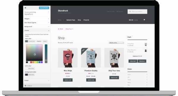 راه اندازی و طراحی یک فروشگاه اینترنتی (Online Store) ساده در ابتدای کار توسط بسیاری از کارشناسان تجارت الکترونیک توصیه شده است.